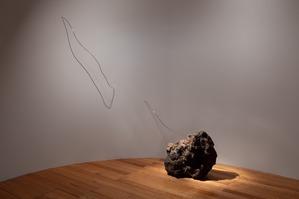 18 maio - Dia Internacional dos Museus - Exposição Joana Escoval Mutações. The Last Poet
