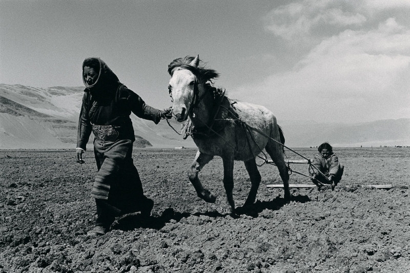Lu Nan, Sisters Sowing Seeds in Spring, Tibet, 2004