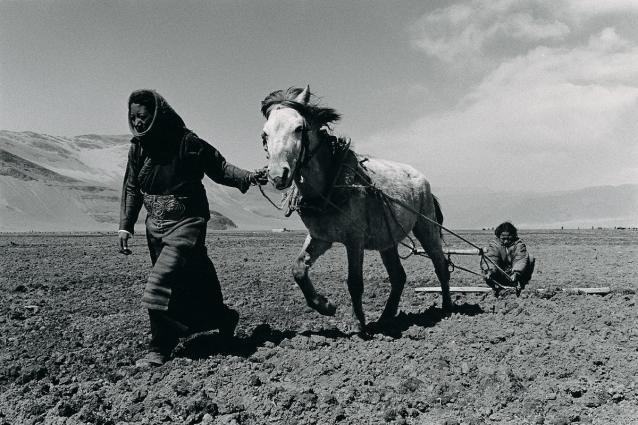 Lu Nan, Sisters Sowing Seeds in Spring, Tibet, 2004