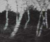 618.jpg